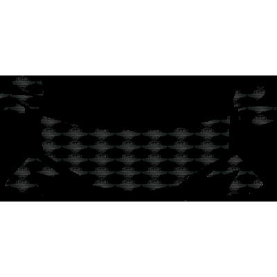 2013-2015 Lexus GS F-Sport 3M Clear Bra Standard Paint Protection Kit